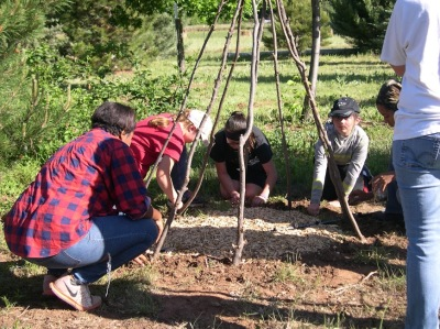 YFTM youth participants learn agricultural skills.
